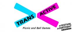 Trans Active Ball Games and Picnic
